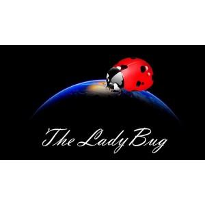 The Ladybug by Hugo Valenzuela