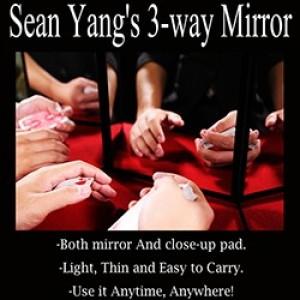 3 Way Mirror by Sean Yang and Magic Soul