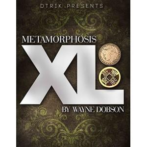 Metamorphosis XL by Wayne Dobson